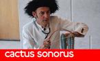 cactus-sonorus-tx